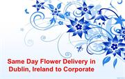 Choose Same Day Flower Delivery in Dublin, Ireland to Corporate