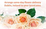 Choose  same-day flower delivery Dublin, Ireland to your loved ones