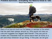 Primitive Survivors - Everything You Need to Know to Take Your Dog Hik