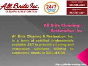 Mold Removal Belmont