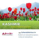 Get Cheap Tour Packages from Best Kashmir Tour Operators