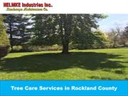 Tree Care Services in Rockland County