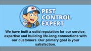 Affordable Pest Control Services - Pest Control Expert