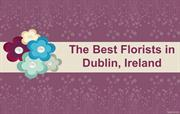 How to Choose Best Florists in Dublin, Ireland