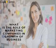 chalk n cheese digital marketing and advertising companies Auckland