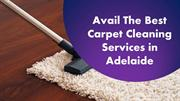 Avail The Best Carpet Cleaning Services in Adelaide