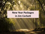 New Year Packages in Jim Corbett  The Baagh Resort in Jim Corbett