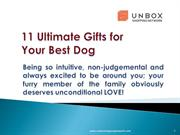 11 Ultimate Gifts for Your Best Dog
