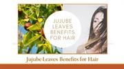 Jujube Leaves Benefits for Hair Treats the Hair Naturally