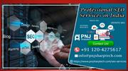 Get Professional SEO Company to Promote Business by PNJ Sharptech
