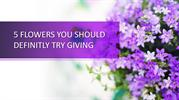 5 flowers you need to gift your loves ones-converted