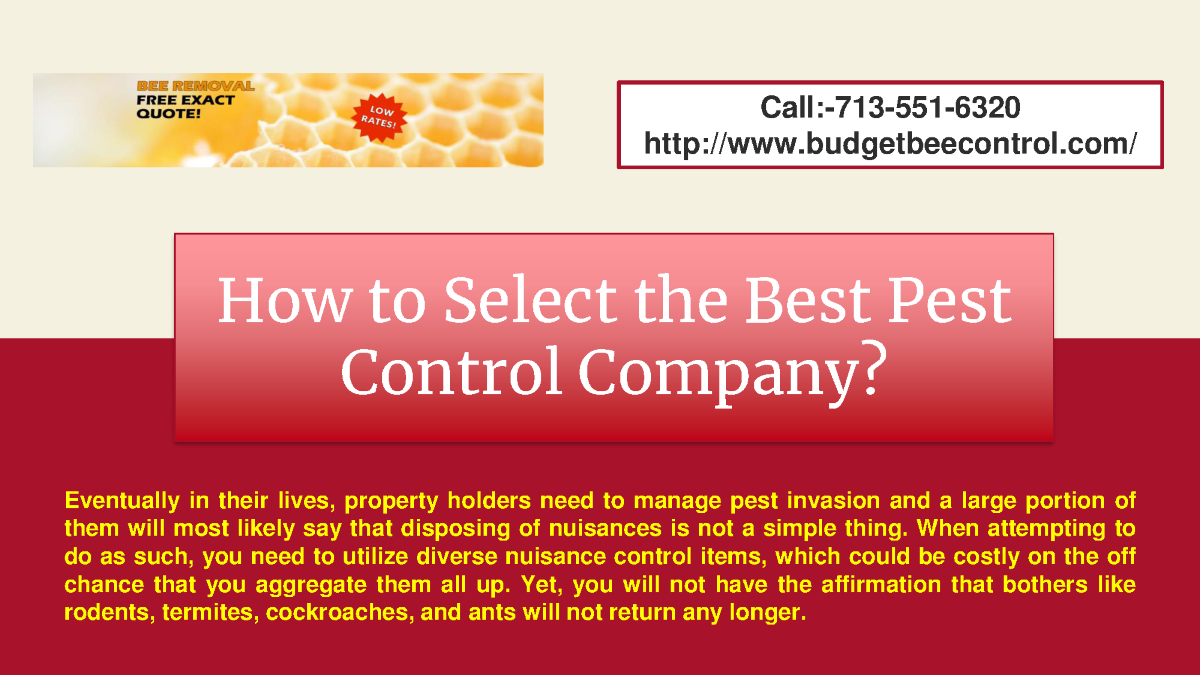 How To Select The Best Pest Control Company Authorstream
