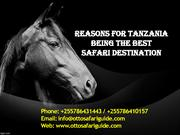 Reasons for Tanzania Being the Best Safari Destination