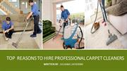 Top  REASONS TO HIRE PROFESSIONAL CARPET CLEANERS