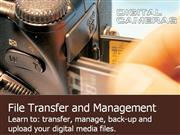 How To File Transfer and Management