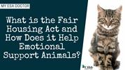 What is Fair Housing Act and How it Help Emotional Support Animals?