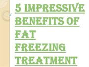 Top 5 Impressive Benefits of Fat Freezing Training Course