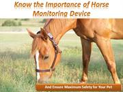 Know the Importance of Horse Monitoring Device And Ensure Maximum Safe