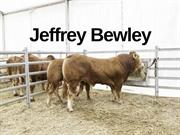 Jeffrey Bewley - Dairy Farm Background