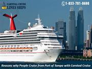 Reasons why People Cruise from Port of Tampa with Carnival Cruise