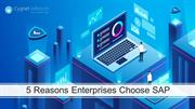 5 Reasons Choose SAP Enterprises Solutions