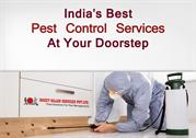 CERTIFIED BAYER PEST CONTROL EXPERT  REMOVE PESTS, BUGS, TERMITES IN J