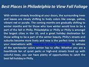 Best Places in Philadelphia to View Fall Foliage