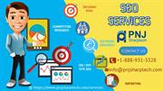 Get Advanced SEO Services by PNJ Sharptech