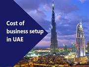 How to minimize the cost of starting a business in UAE?
