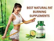 Upset Due To Annoying Weight? Use Garcinia Cambogia