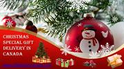 Christmas Cakes, Flowers, Gift Hamper Delivery in Canada