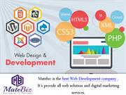 Search For A Great Web Development Company - Matebiz India