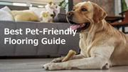 Guide For Best Pet Friendly Flooring