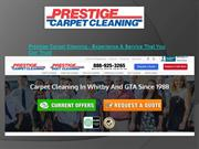Carpet Cleaning Thornhill
