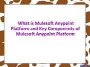 What is Mulesoft Anypoint Platform and Key Components