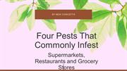 Four Pests That Commonly Infest Supermarkets, Restaurants and Grocery