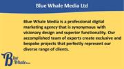 Manchester Content Marketing Agency | Blue Whale Media Ltd