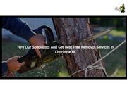 HIRE OUR SPECIALISTS AND GET BEST TREE REMOVAL SERVICES IN CHARLOTTE