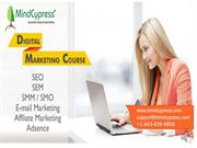 Online Digital Marketing Course  Best online courses to join for profe