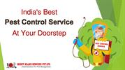 Get Rid Of All Kinds Of Pest - Insect Killer Services Pvt Ltd