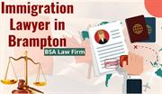 Key Points- Before Choosing Immigration Lawyer in Brampton