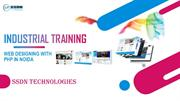 Take Industrial Training of Web Designing with PHP Course
