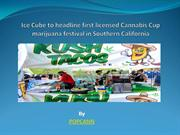 Ice Cube to headline first licensed Cannabis Cup marijuana festival in