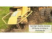 Get High-Quality Services Of Stump Grinding In Charlotte Nc