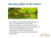 Pine Pollen Powder and Tincture