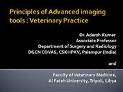 Advanced imaging in Veterinary Practice
