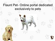 Flaunt Pet- Online portal dedicated exclusively to pets