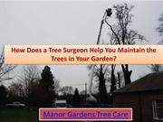 How does a tree surgeon help you maintain the trees in your garden?