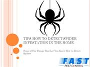 TIPS HOW TO DETECT SPIDER INFESTATION IN THE HOME