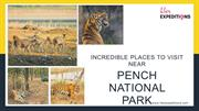 Incredible Places To Visit Near Pench National Park